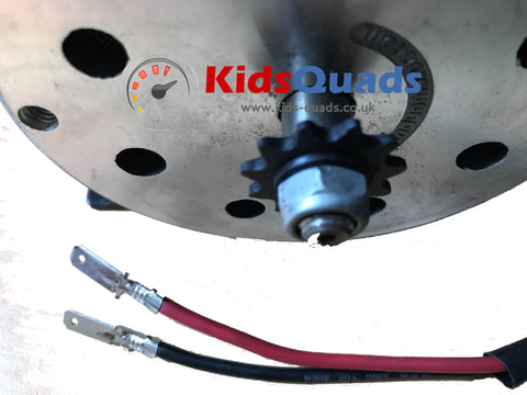 48v 1000w Go-Kart Motor (Brushed) - Kids Quads