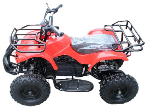 NEW 2017 MODEL Electric Kids Quad Bikes (Age 4-9 years) 36v 1000w - Kids Quads