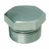 Threaded Pipe Hex Plug