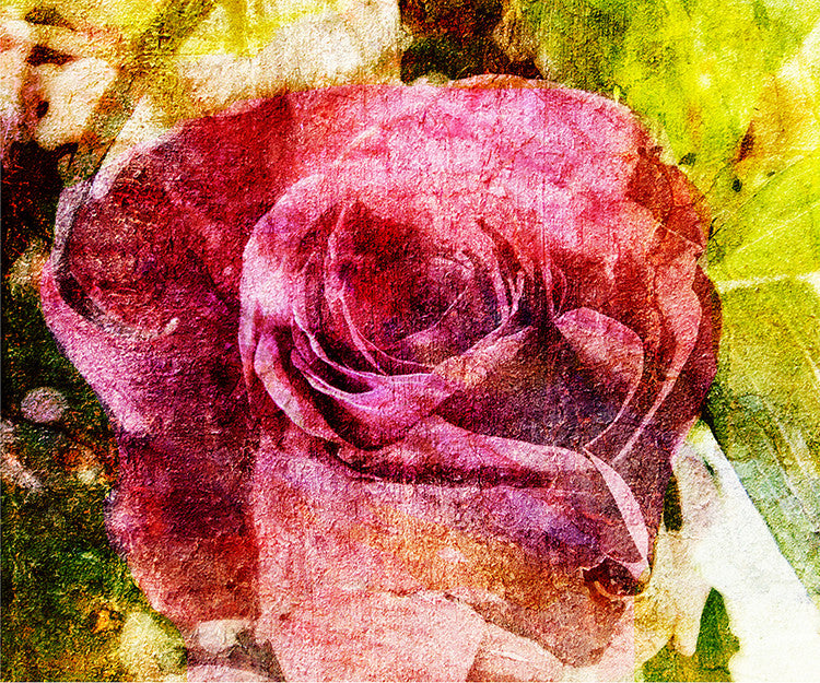 Birthday Blossoms Wall Art - Rose