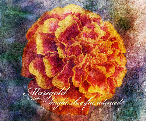 Birthday Blossoms Wall Art - Marigold, with characteristic description