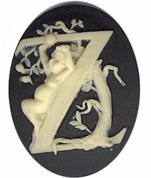 "Cameo Letter ""Z"" Monogram Personalized Resin Initials 40x30mm Black  162x"