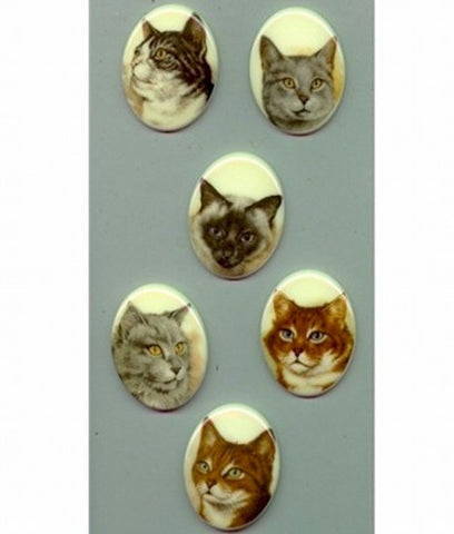 40x30mm Assortment of Six Plastic Cat Cabochons 73R