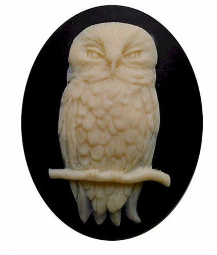 40x30mm wise Owl cameo Bird Cameo cabochon halloween goth 825x