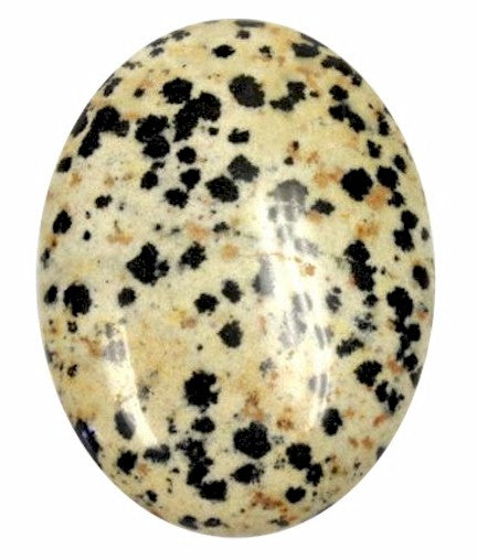 40x30mm Gemstone Cabochon Dalmation Flat Back  851x
