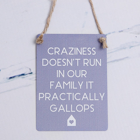 Crazy Family Mini Metal Sign - Feeling Quirky
