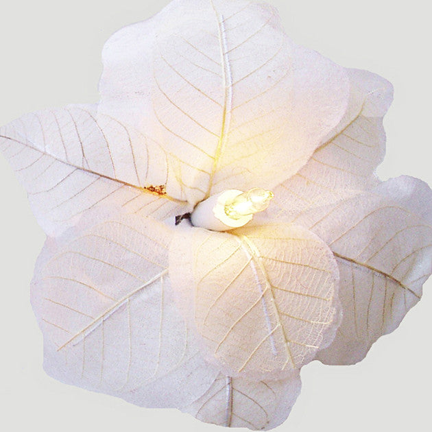White Poppy Fairy Lights - Feeling Quirky