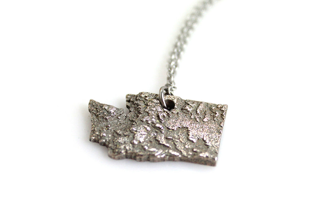 Washington State Topography Necklace - Steel - Free For Mind