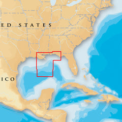 Navionics Platinum+ - Gulf of Mexico Central - microSD-SD