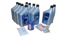 Honda 100 Hour Maintenance Kit - 115, 135, 150HP