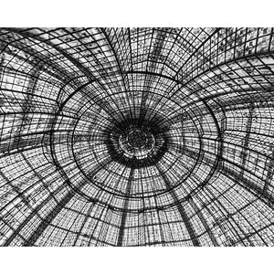 Paris Ceilings Photography Print Black and White 4x5