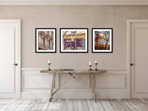 RARITIES | Paris Photography Print Wall Design Example