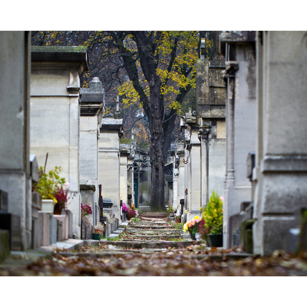 PERE LACHAISE | Paris Photography Print