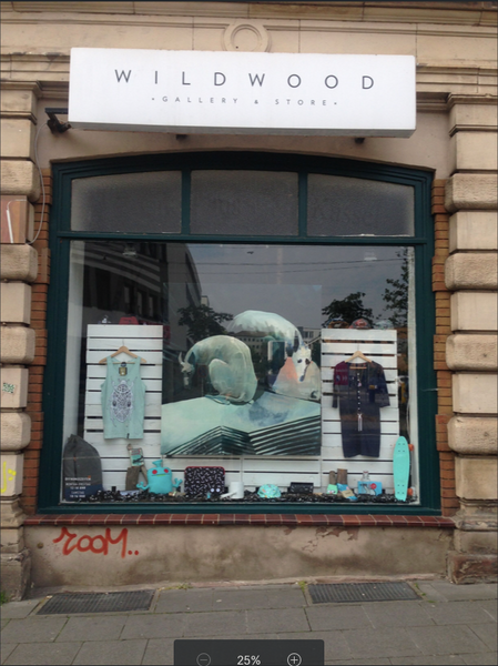 Window of Wild Wood, street art store and gallery in Kassel, Germany