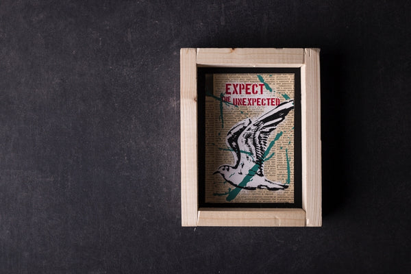 Expect the unexpected (Seagull) original print with frame S