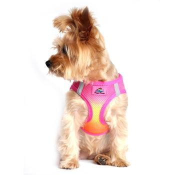 Raspberry Pink & Orange American River Dog Harness - Thepinkstore.com - 2