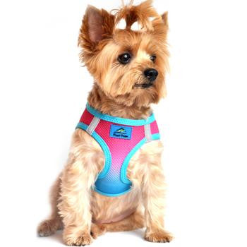 Sugar Plum American River Dog Harness Ombre Collection - Thepinkstore.com - 1