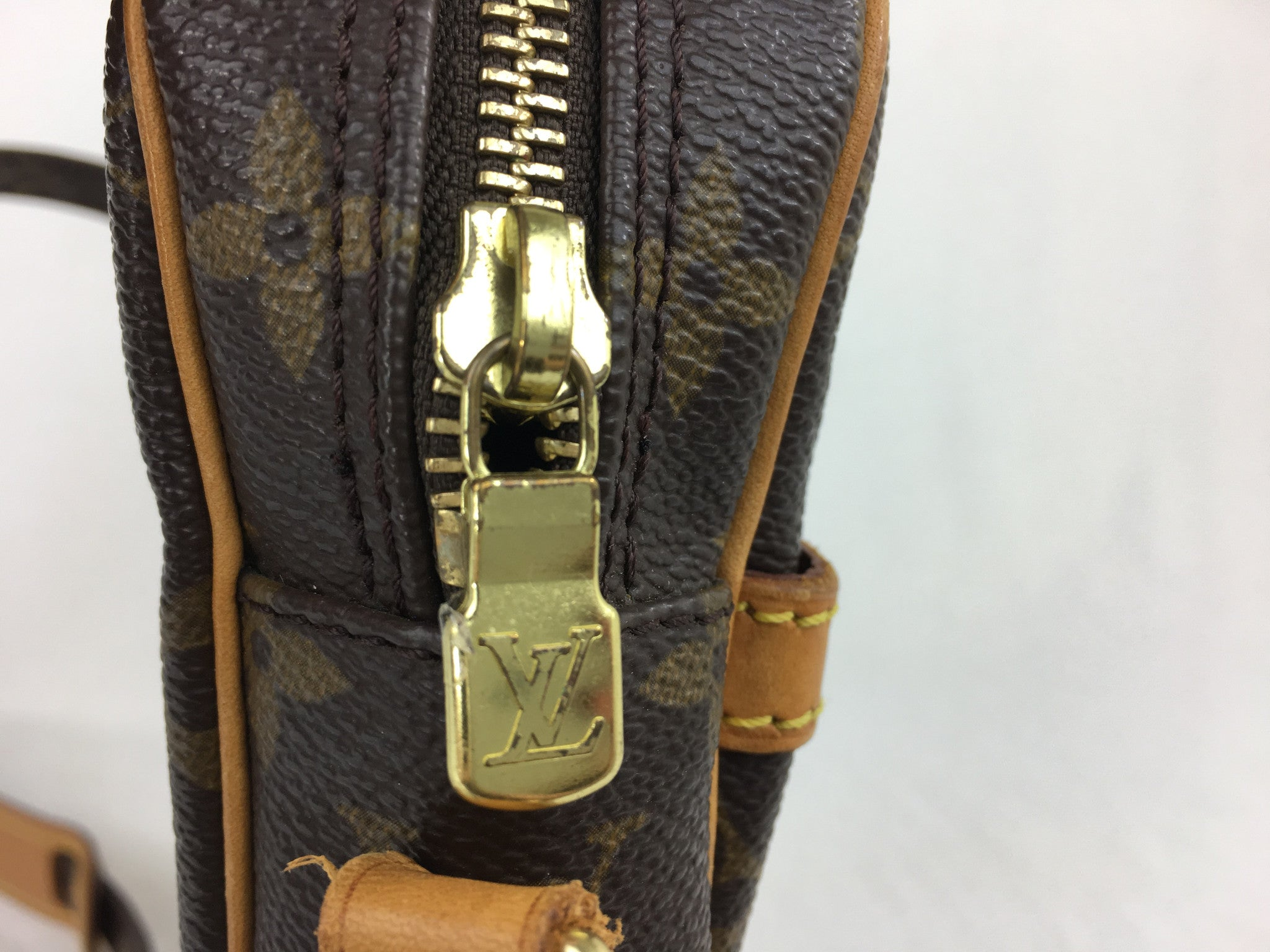 LOUIS VUITTON Danube Monogram Crossbody Bag