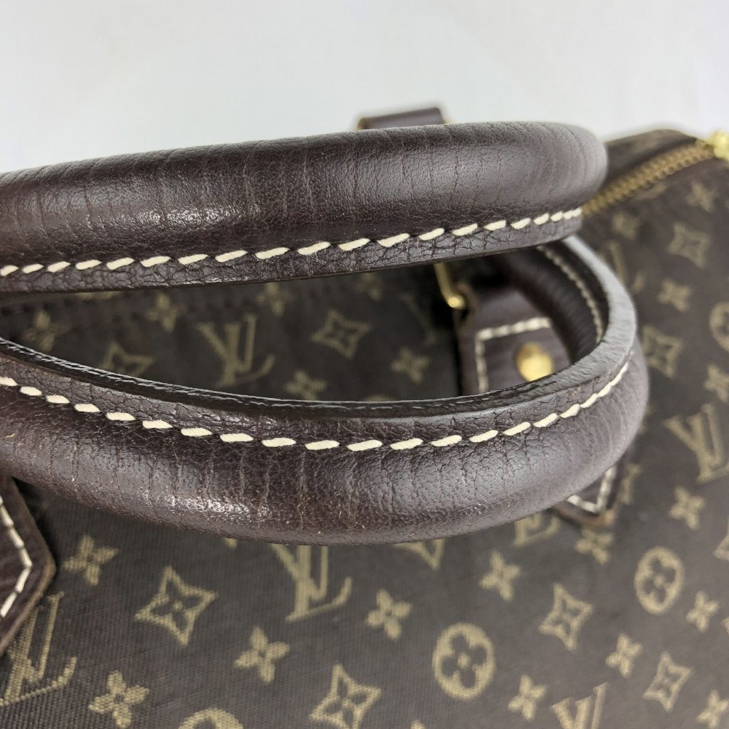 LOUIS VUITTON Mini Lin Speedy 30 Ebene