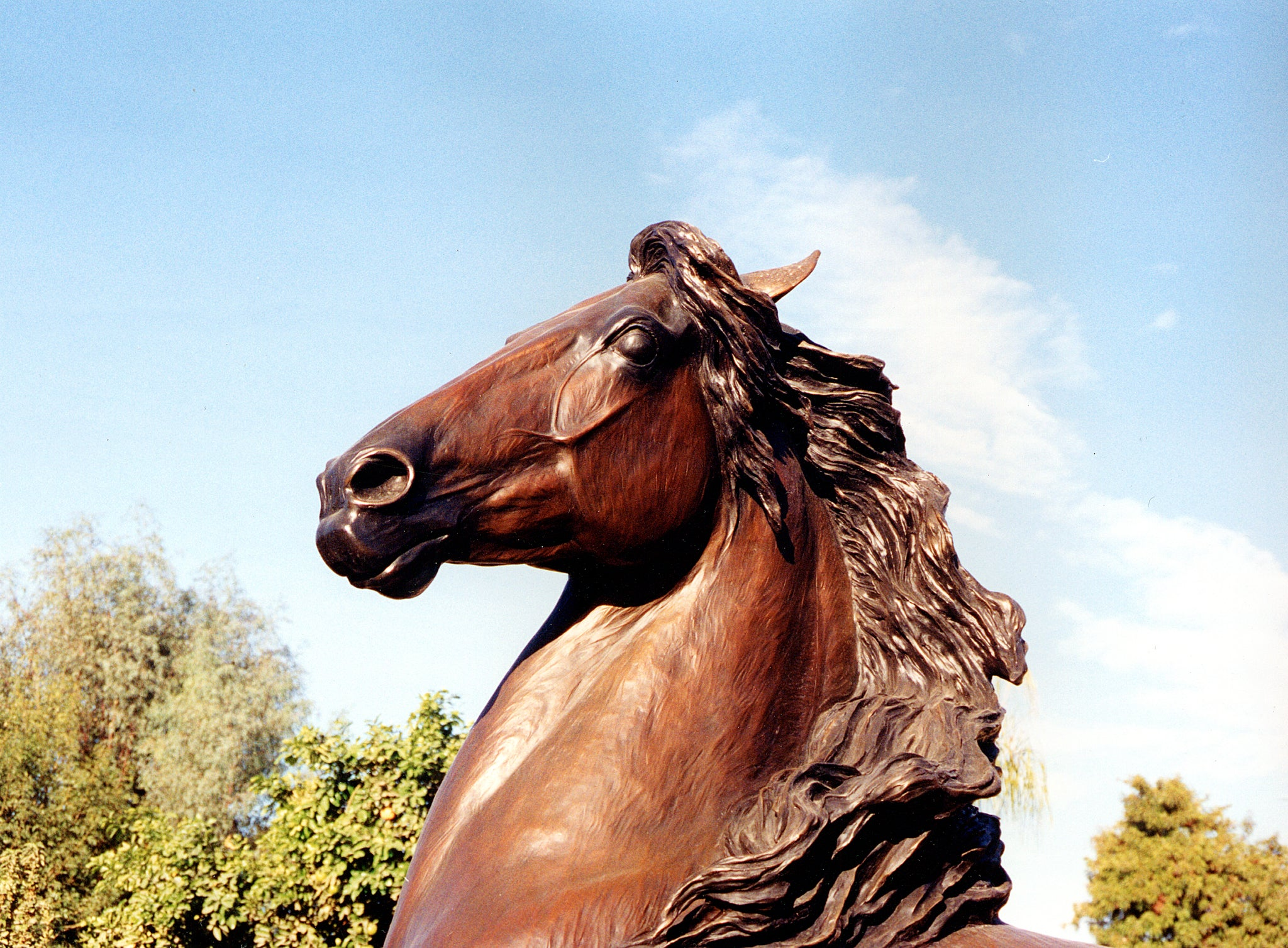 close up head of spirit bronze statue rancho mirage