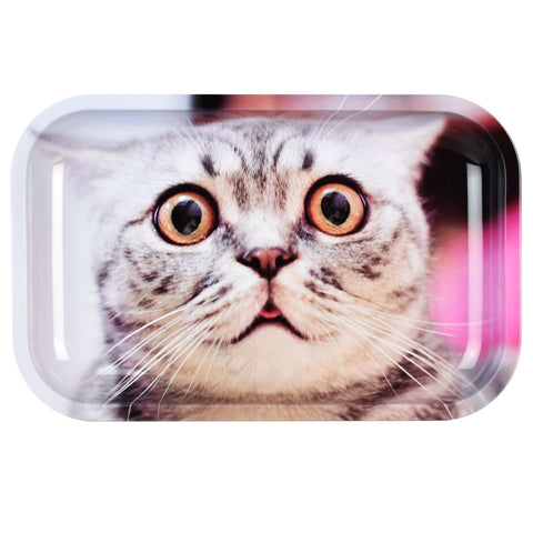 Pulsar Dazed Cat Metal Tray