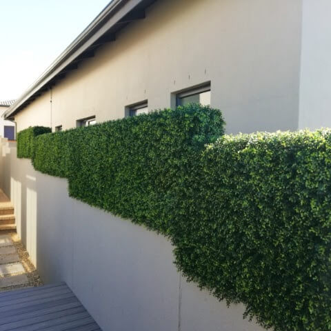 Artificial Boxwood Hedge Screen