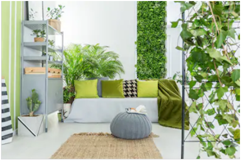 green wall suppliers