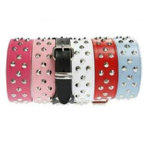 DOGUE Stud Muffin Leather Dog Collar