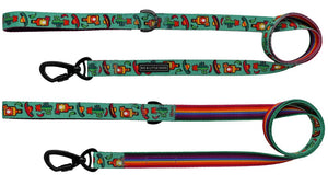 Big & Little Dogs Dog Leash - Mexican Fiesta