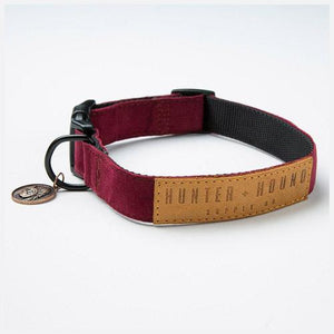 Hunter-and-Hound-Gypsy-Dog-Collar-Minipet