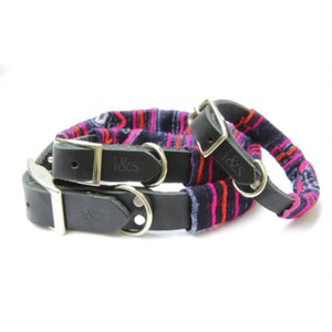 Ike & Stella Dog Collar - Fuschia / Indigo