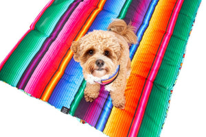 Big & Little Dogs - On The Go Pet Mat - Mexican Fiesta