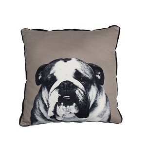 ** SUPER SPECIAL ** Mog and Bone Throw Cushion - Bulldog