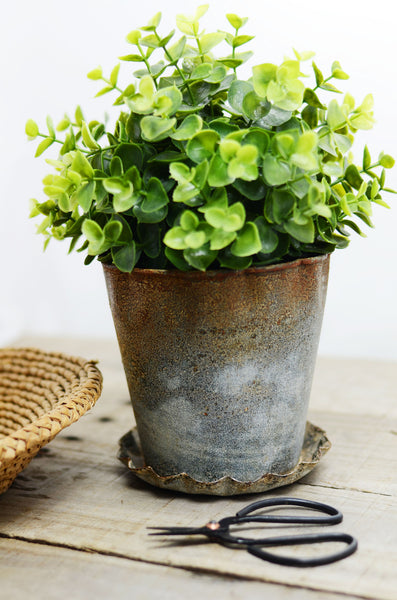 Farmhouse Zinc Flower Pot with Scalloped Dish