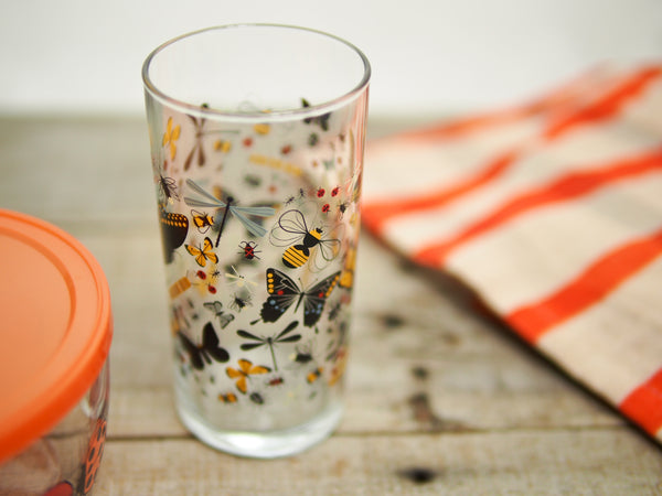 Butterfly Drinking Glass & Ladybug Lunch Container