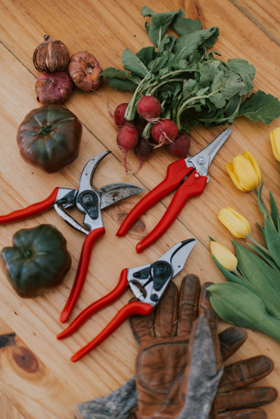 Felco 2 Classic Pruning Shears