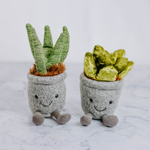 Mini Plush Succulent
