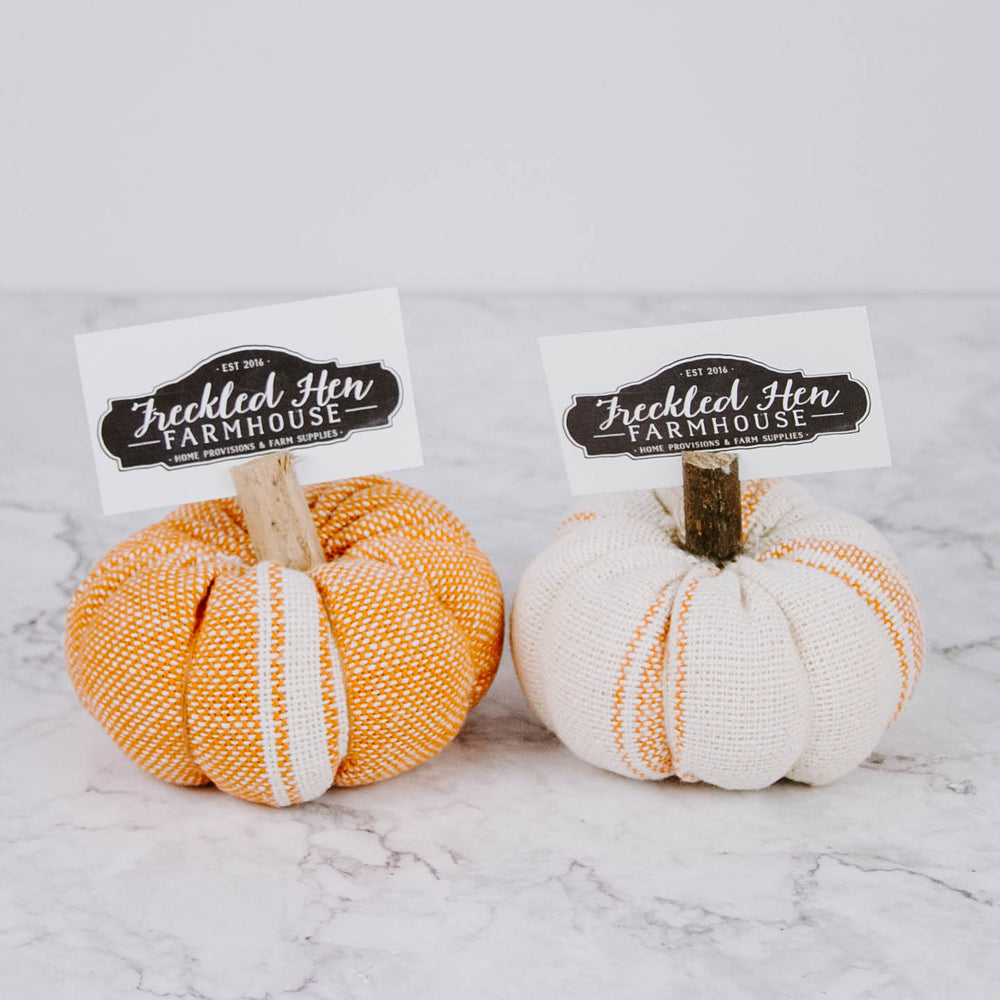 Knit Pumpkin Place Card Holder