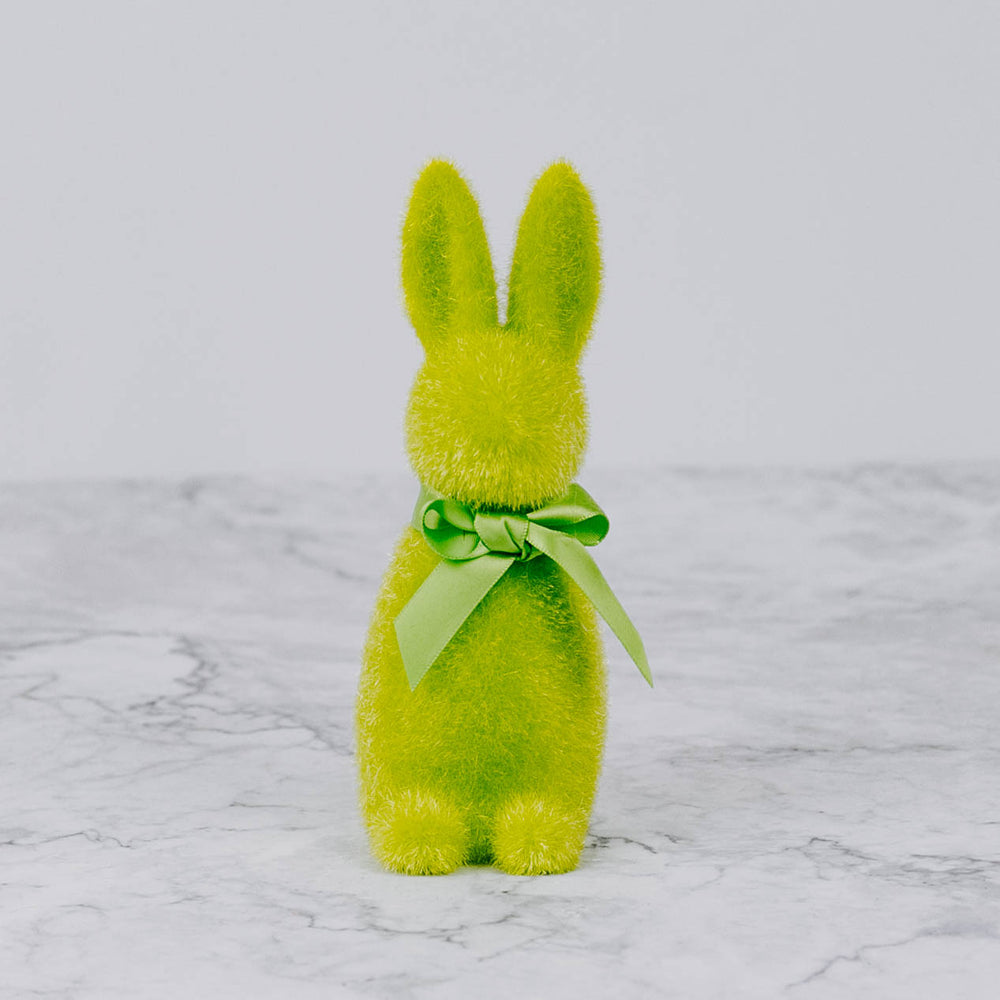 Colorful Easter Bunny