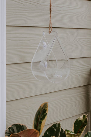 Dew Drop Window Bird Feeder