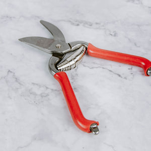 Small Red Pruners