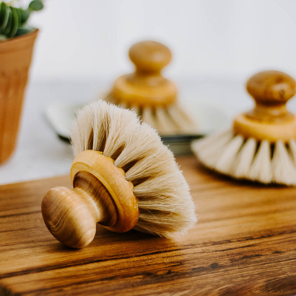 Round Wooden Dishbrush with Knob