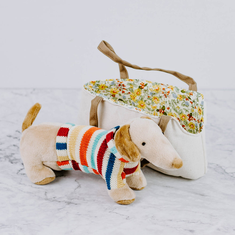 Plush Dog in Bag
