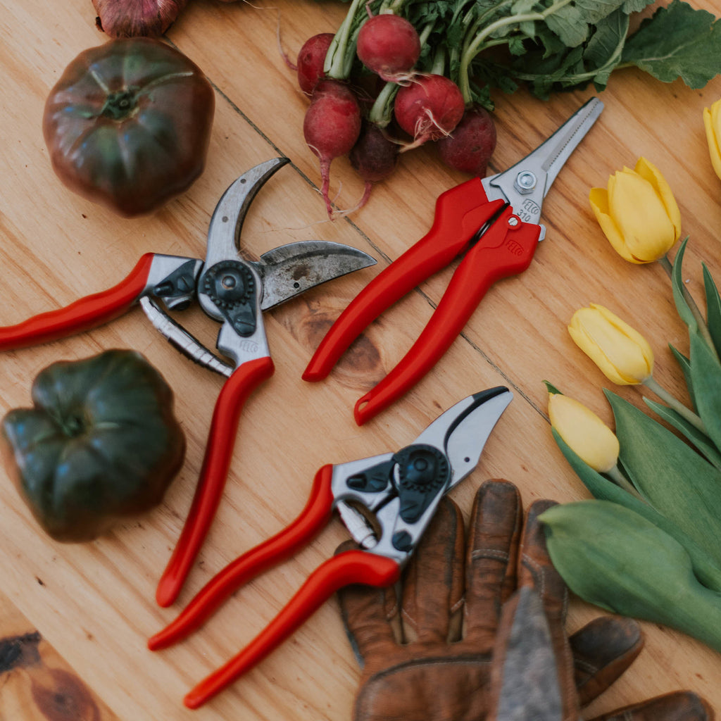 Felco 6 Compact Pruning Shears