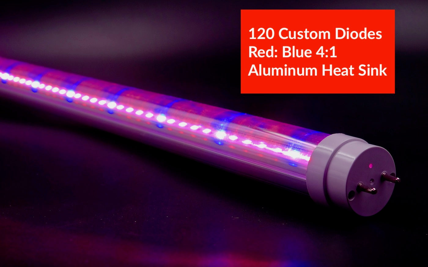 NEW Horticulture Red & Blue T8 LED