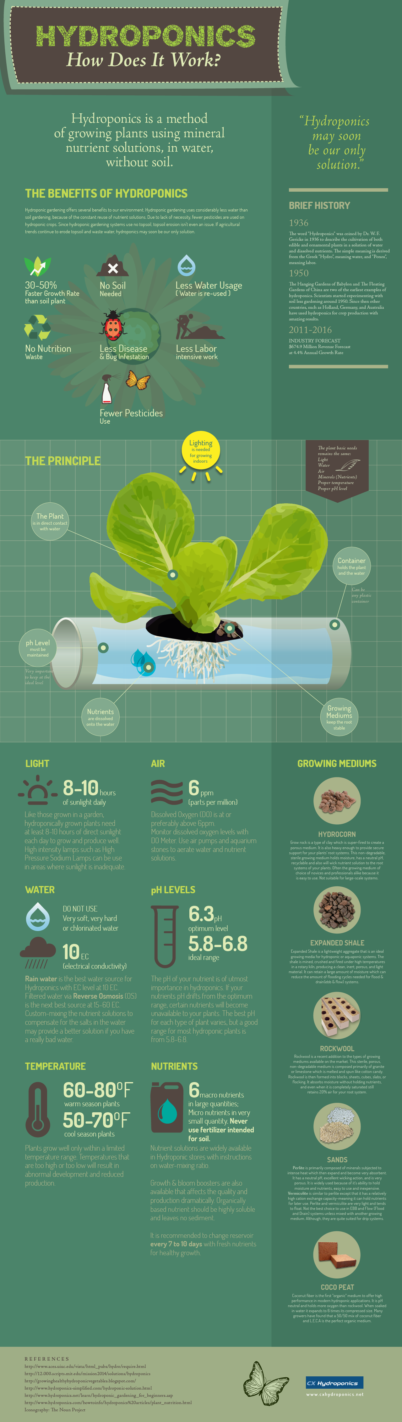 Hydroponics - how does it works?