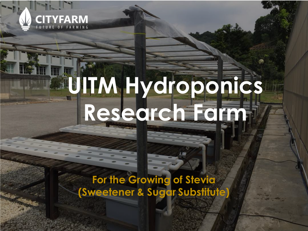 UITM Hydroponics Research Farm (For the growing of Stevia)