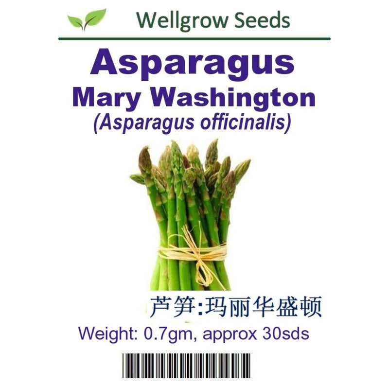 Asparagus Mary Washington Seeds(0.7gm approx 30seeds) - CityFarm