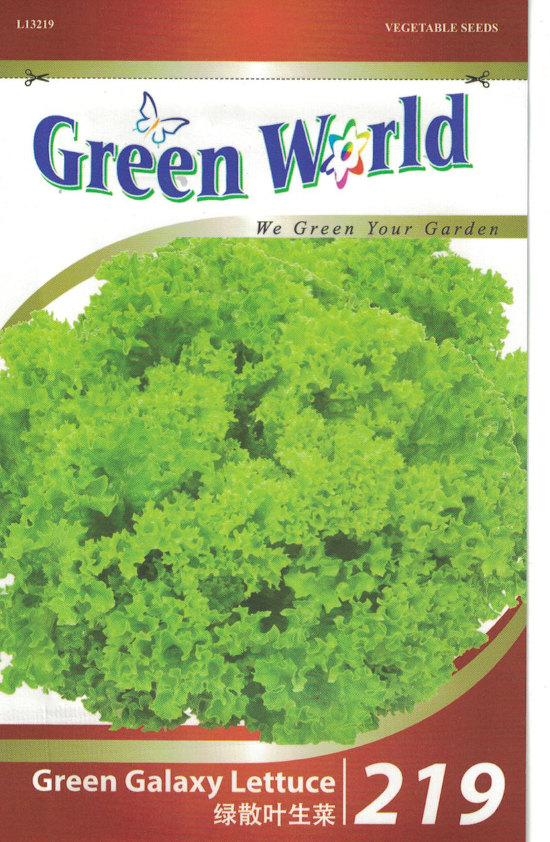 Green Galaxy Lettuce