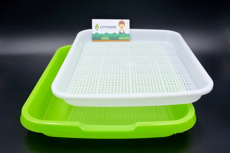 Sprout Plate / Seedling Tray / Nursery Tray - CityFarm